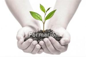 Formacion2